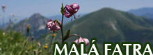 GALLERY - MAL FATRA