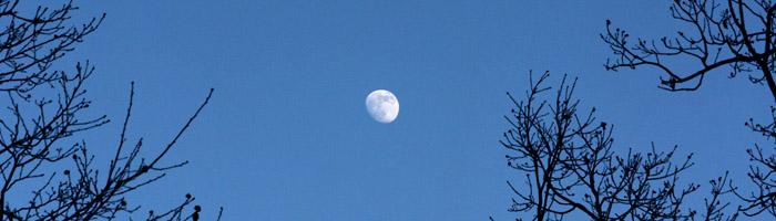 domov s krásne kráčalo pri mesiačiku